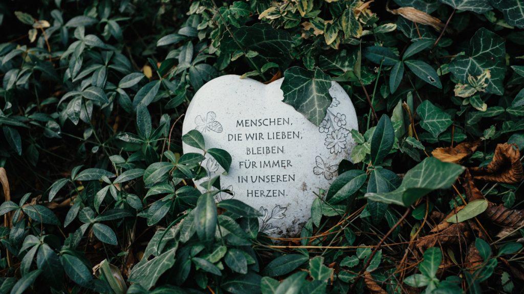 Pokopališče brezimnih, Dunaj