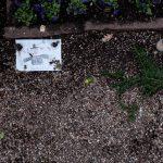 Grob Hans Christian Andersena, Kopenhagen